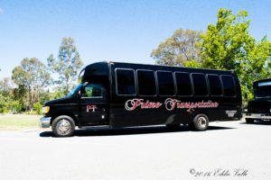 pearl-bus-party-bus-rental-service