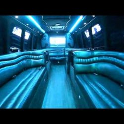 Primo Transportation- Krystal bus